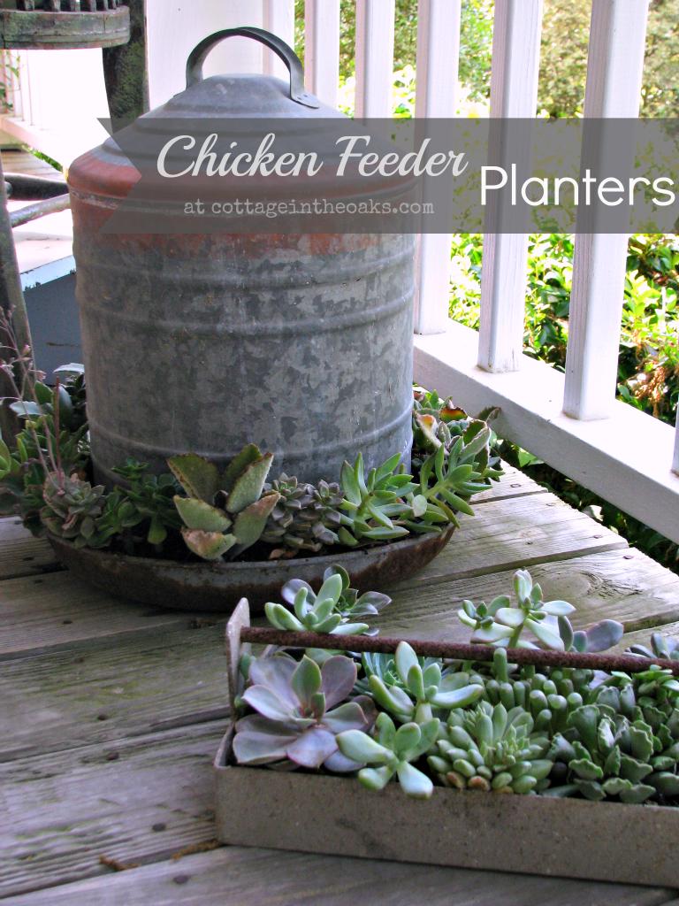 Chicken Feeder Planters