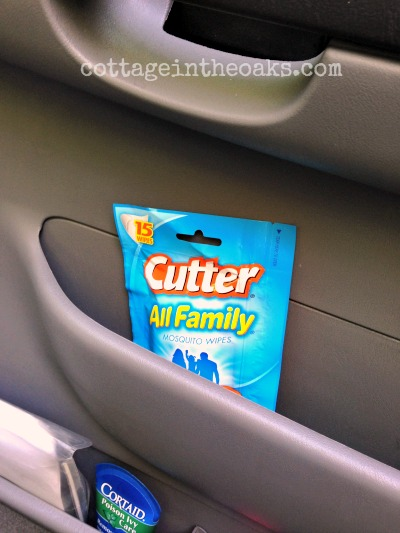 Cutter Insect Wipes