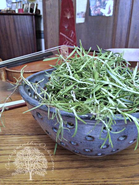 Herbs as Pot Pourri