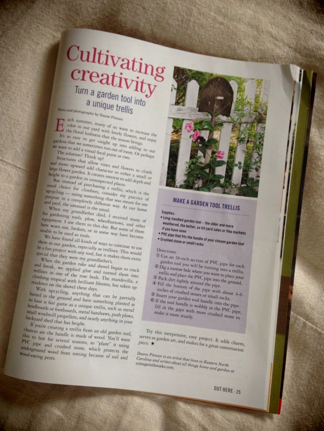 Cultivating Creativity - Cottage in the Oaks
